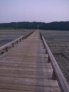 蓬莱橋(静岡県島田市):GR DIGITAL、28mm相当、1/440sec、F7.1、ISO64、-0.3EV、プログラムAE