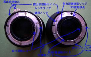左:NIKKOR-S・C Auto 50mm F1.4 (Ai改)、右:Ai AF Nikkor 50mm F1.4D