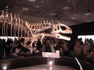 大恐竜展(国立科学博物館):GR DIGITAL、28mm相当、F2.4開放、1/5sec、ISO154、自動感度、プログラムAE、-0.3EV