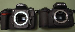 Nikon D300 and Nikon F100