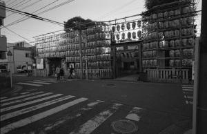 ヨコハマ・ビオゴン・モノクロ計画その48(金刀比羅・大鷲神社(ことひら・おおとりじんじゃ):横浜市南区):CONTAX G1、Carl Zeiss Biogon T* 21mm F2.8、Ricoh GV-1、F5.6、1/125秒、ILFORD XP2 SUPER、Kenko L37 Super PRO、Nikon SUPER COOLSCAN 5000 ED(フィルムタイプ:ネガ(カラー)、色空間:グレースケール、ICEありGEMなしROCなし)
