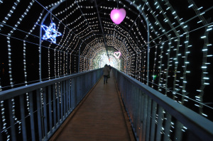 【写真下】清川村宮ケ瀬湖畔園地クリスマスみんなのつどい(水の郷大つり橋):Nikon D300S、AF-S DX NIKKOR 10-24mm f/3.5-4.5G ED、Nikon NCフィルター、HB-23フード、10mm(広角端)、F3.5開放、1/30秒、手持ち撮影(歩きながら)、絞り優先AE、ISO-AUTO(ISO 1600)、AWB、ピクチャーコントロール:ポートレート、マルチパターン測光、51点AF-AUTO 、高感度ノイズ低減:標準