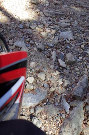 川上村営林道村道秋山・川端下線の標高2140m付近:Ricoh GR、18.3mm(35mm版28mm相当)、F3.5、1/60秒、プログラムAE、ISO-AUTO(ISO 100)、AWB、画像設定:スタンダード、スポットAF