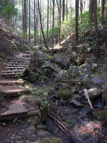 足柄森林公園 丸太の森:Ricoh GR DIGITAL、28mm相当、F2.4開放、1/45sec、ISO64、-0.3EV、プログラムAE