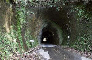 【写真】柿木台第一トンネル(千葉県市原市):Ricoh GR、18.3mm(35mm版28mm相当)、F2.8開放、1/30秒、プログラムAE、ISO-AUTO(ISO 100)、AWB、画像設定:スタンダード